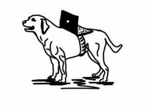 dog fixed